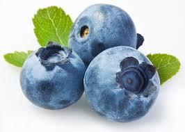 arandanos, antioxidantes, radicales libres