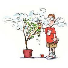 pesticidas, herbicidas, glifosato