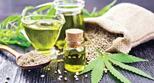 Cannabis, cannabidiol