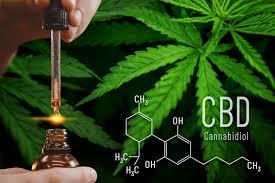 7 beneficios y usos del aceite de CBD