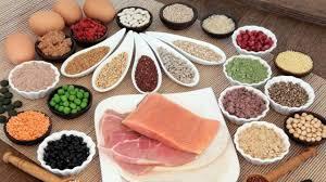 Dieta, alimentacion