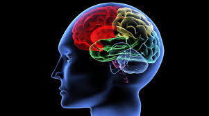 Cerebro - enfermedades