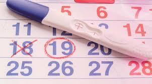 ¿Cuándo ovulas? Duración y síntomas