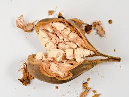 Baobab ¿el más nuevo secreto para perder peso?