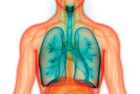 Un fármaco antimicótico mejora los biomarcadores clave de los pacientes con fibrosis quística