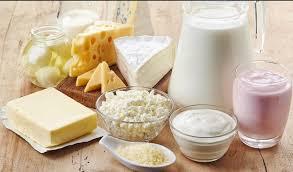 Alimentos fermentados, probioticos
